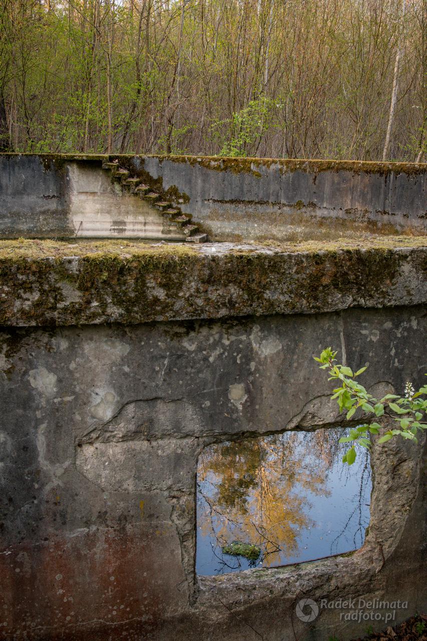Betonowe kręgi w Zwierzyńcu