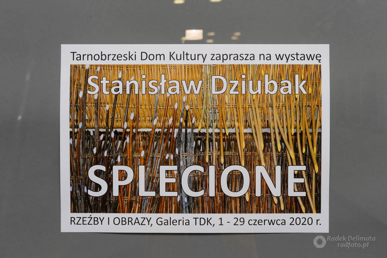 Splecione - Stanisław Dziubak
